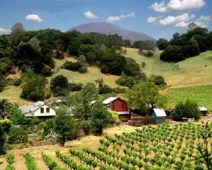 01 - The Whole Farm- 3106PalisadesRd